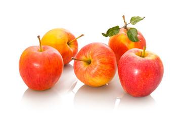 Äpfel rot reif Sorte Elstar