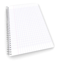 Wired graph paper workbook