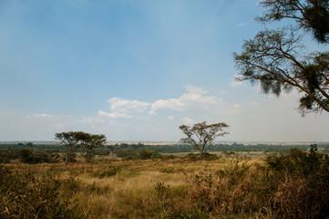 Paesaggio, Uganda, Africa