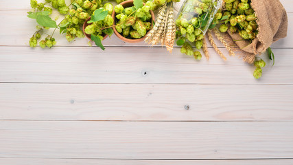 Hops and wheat. On a white wooden table. Free space for text. Top view.