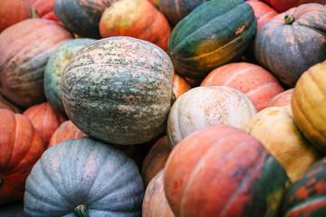 Heap of big dirty pumpkins.