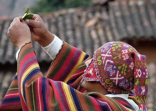 shaman holds coca leaves to the four corners of the world in spirital offering ceremony