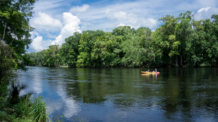 Young couple man and woman photographer kayaking down Santa Fe river in Florida in a yellow kayak with a forest landscape as background