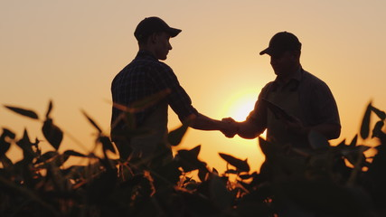 Two farmers talk on the field, then shake hands. Use a tablet
