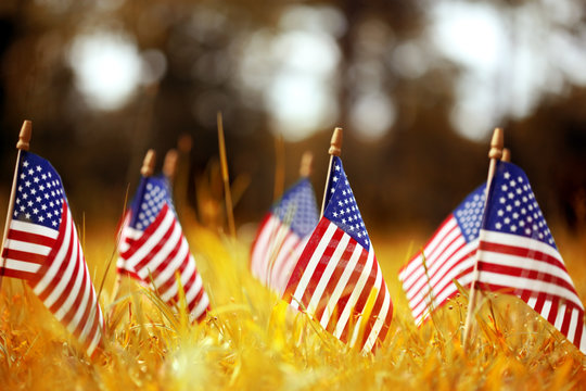Group of American flags in yellow and orange Autumn grass