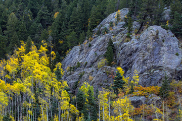 In autumn, Taos Ski Valley in the Carson National Forest of northern New Mexico fills with yellow aspens and other colorful foliage
