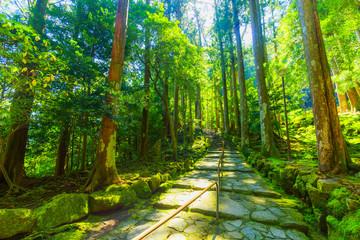 那智勝浦の自然風景