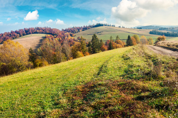 lovely autumn landscape in mountains. forest with red foliage on the hill in the distance. wonderful weather on a sunny day
