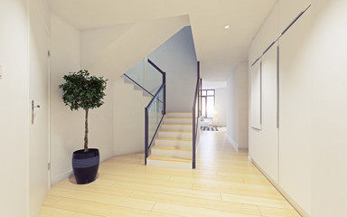 modern apartment entrance hall.