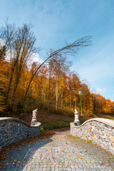 path from the stone bridge in to the forest. trees in fall colors. blue sky above the landscape