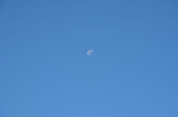 The moon on morning clear sky