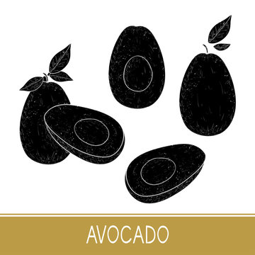 Avocado. Fruit, leaves. Black silhouette on white background. Se