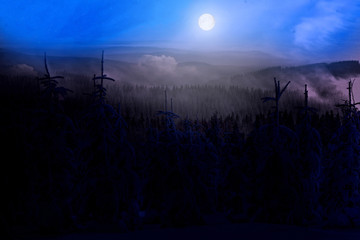Forest landscape, night, hills and full moon