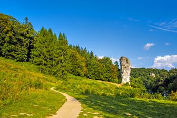 Fototapeta Pieskowa Skala, Poland - Monumental limestone rock Cudgel or Bludgeon of Hercules - Maczuga Herkulesa - in the Ojcowski National Park obraz