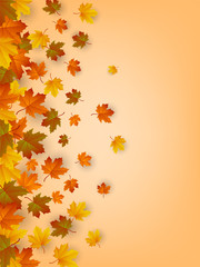 Autumn background with falling leaves. Red, yellow and orange autumn leaves. Vector