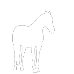 white background, outline, simple sketch of a horse
