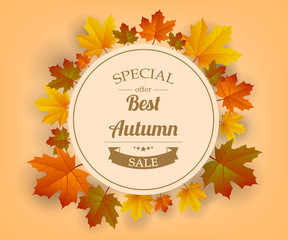 Autumn sale. Autumn background with red, yellow and orange leaves. Vector