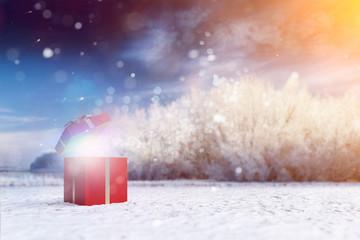 Überraschung Geschenk zu Weihnachten in Natur