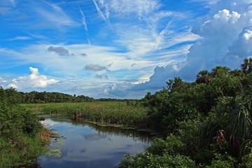 Guana River #1