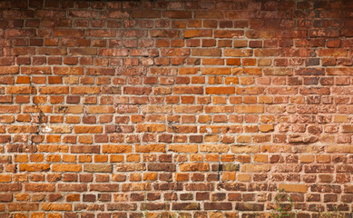 old brick wall as an element of the packaging design