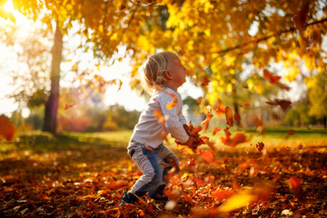 Adorable child boy with leaves in autumn park. The concept of childhood, family and kid