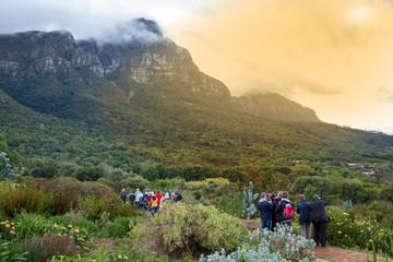 Kirstenbosch Botanischer Garten in Kapstadt