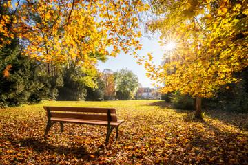 Wall Mural - Goldener Herbst im Park auf einer Parkbank