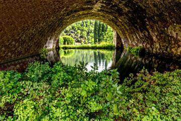 Kanal Wasser Pflanzen