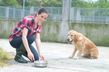 animal shelter volunteer feeding the dogs