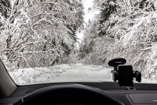 Winter cold day in the snowy forest from the car window.