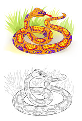 Fantasy illustration of fairyland royal python. Colorful and black and white pattern for coloring. Worksheet for children and adults. Vector cartoon image.