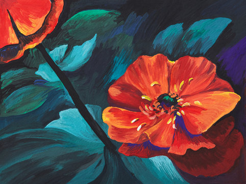 Colorful poppies. Acrylic flowers. Hand painted, floral illustration