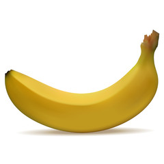 3d realistic banana isolated on white background. Vector illustration.