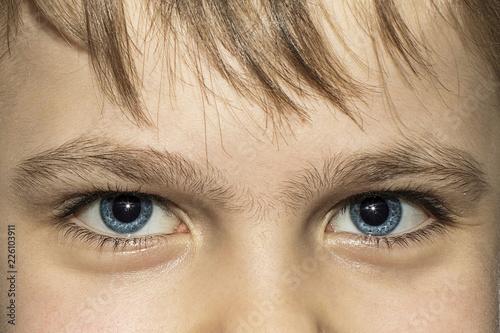 Big beautiful pigeon children's eyes with long eyelashes