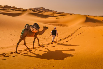 Crossing the Sahara