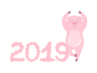 Relax pig with bubbly 2019