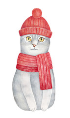Illustration of cute, little one, tabby kitten clothed in bright red knitted hat and scarf set, looking at camera with big yellow eyes. Hand drawn water colour drawing, cut out. Soft and beautiful.