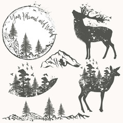 Forest collection of vector animals, trees and mountains