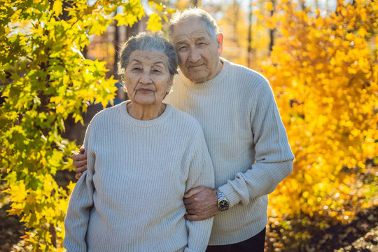 Happy senior citizens in the autumn forest. family, age, season and people concept - happy senior couple walking over autumn trees background