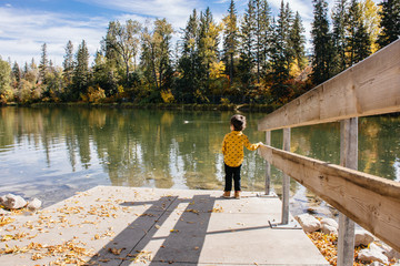 Young boy admiring the view at Bowness Park in Autumn