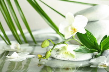 Spa stones, orchid and bamboo leaves in water. Space for text