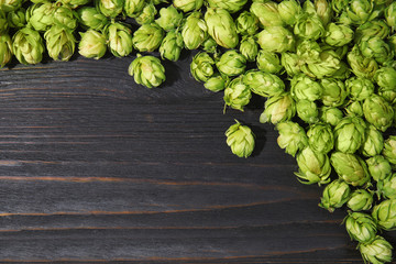 Fresh green hops on wooden background, top view with space for text. Beer production
