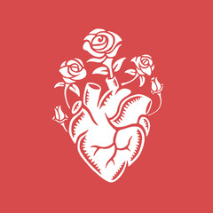 Hand drawn human heart with roses. Vintage vector illustration.
