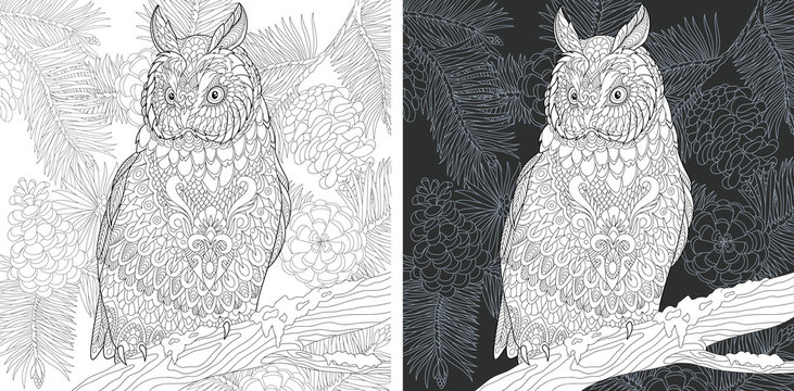 Owl in forest. Fir tree branches. Coloring Page. Coloring Book.