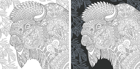 Bison. Bull. Buffalo. Coloring Page. Coloring Book.