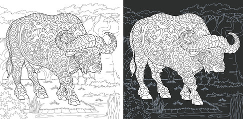 Buffalo. Bull. Bison. Coloring Page. Coloring Book.