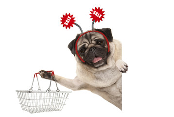 happy smiling pug puppy dog, holding up shopping basket, wearing diadem with red sale sign, isolated on white background