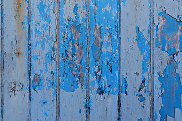 Vintage painted wooden background wall blue color, close up natural texture