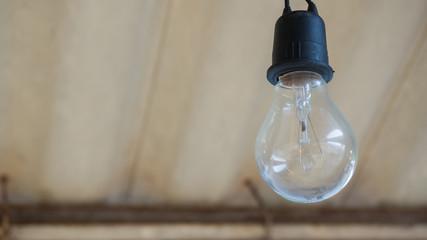 Wall Mural - Light bulb close up