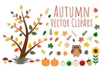 Set of autumn vector clipart.